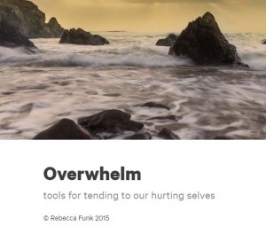 2015 Overwhelm cover