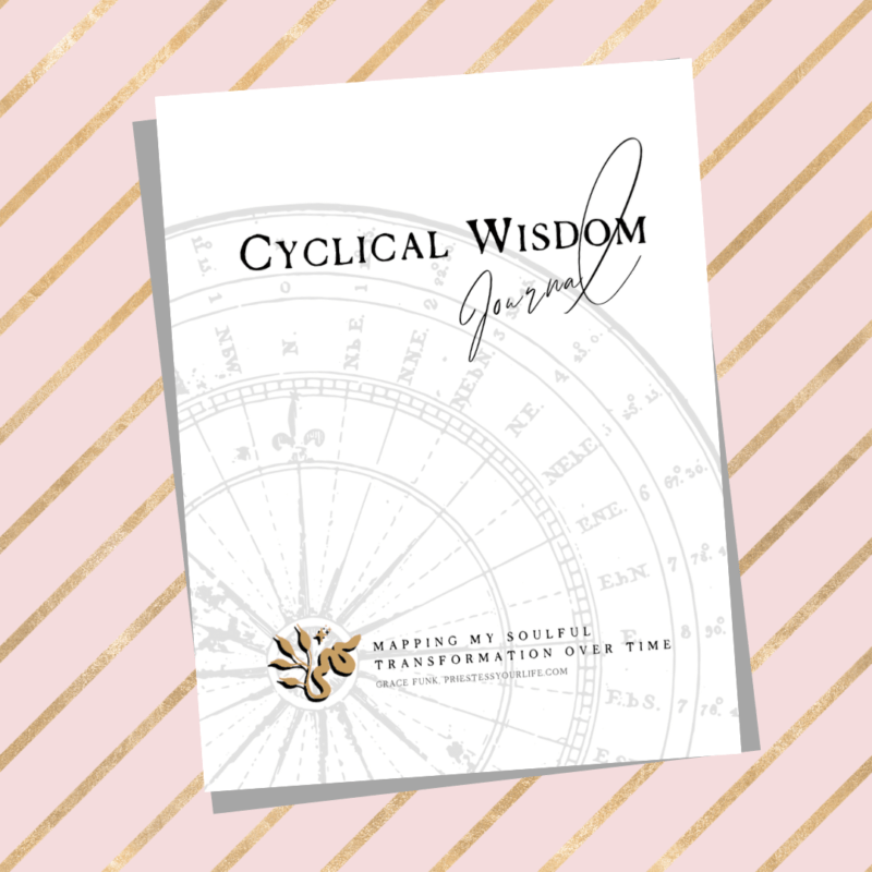 cyclical wisdom journal helps you scale the mountain